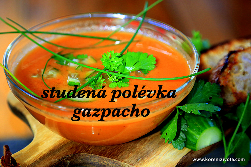 studená polévka gazpacho