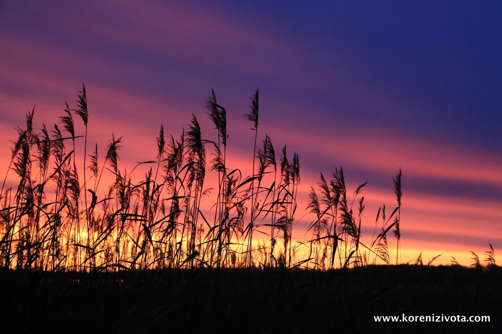 východ slunce nad jezerem